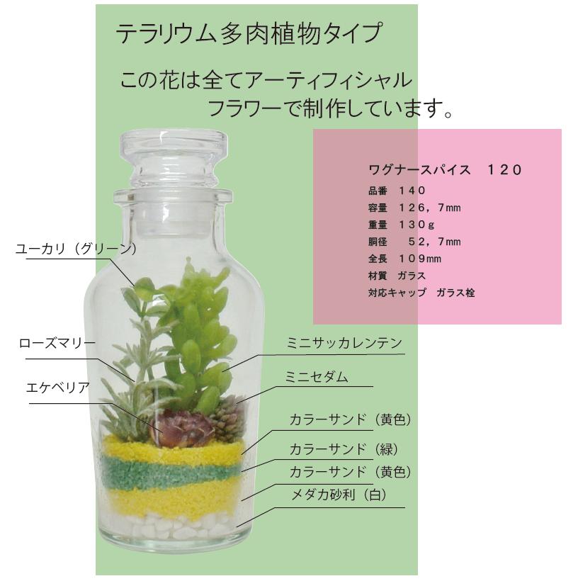 テラリウム多肉植物タイプ | ワグナースパイス120を用いた事例